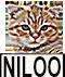 niloo.png